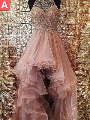 Ball Gown Halter Sleeveless Sweep/Brush Train Tulle Dress